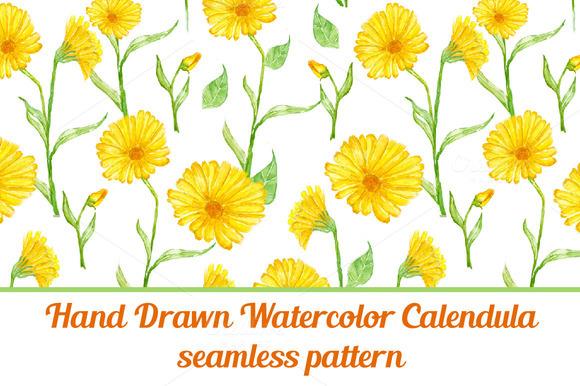 Calendula Flower Seamless Pattern