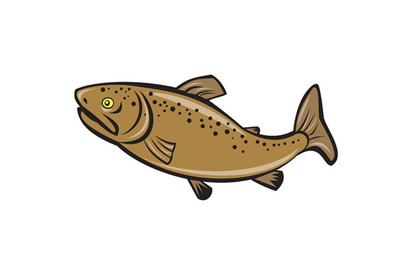 Brown Trout Fish Side Cartoon