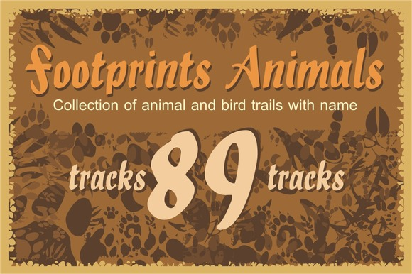 89 Footprints Animals And Birds
