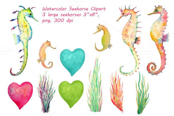Watercolor Seahorse Clipart
