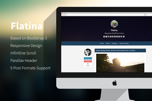 Flatina Responsive WordPress Theme