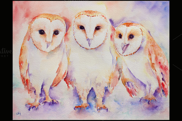 Watercolor Art Print Three Barn Owls