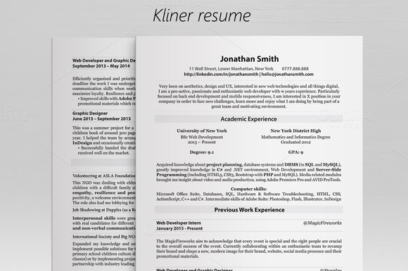 Kliner Simple Professional Resume