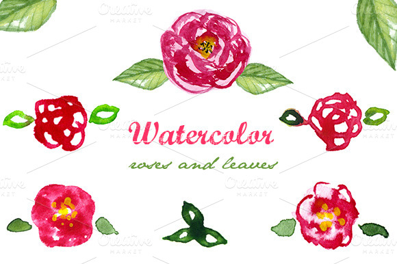 Watercolor Roses And Leaves Clip Art