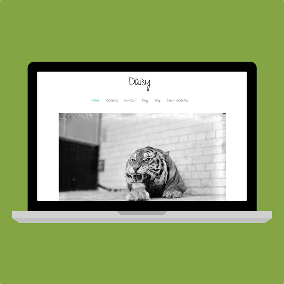 SALE Daisy Wordpress Theme