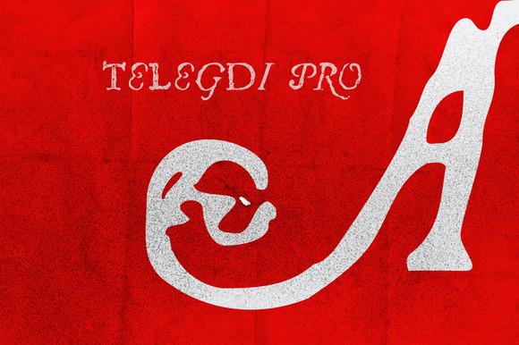 Telegdi Pro