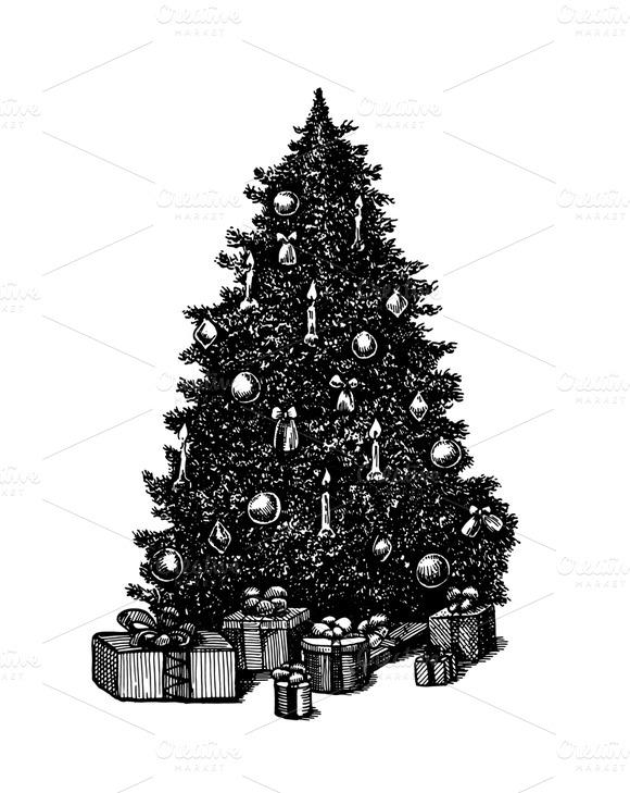 Hand Drawn Vector Christmas Fir Tree
