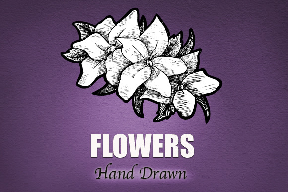 Flowers Hand Drawn