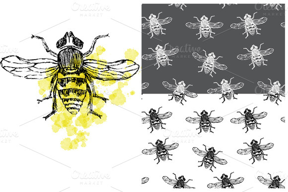 Hand-drawn Bee And 2 Patterns