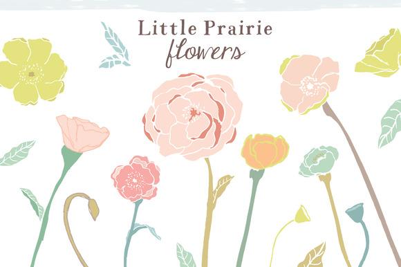 Prairie Flowers Clip Art
