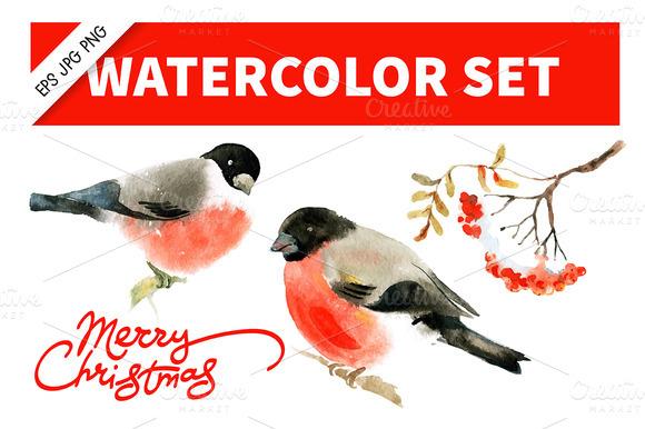 Watercolor Bullfinch Ashberry Set