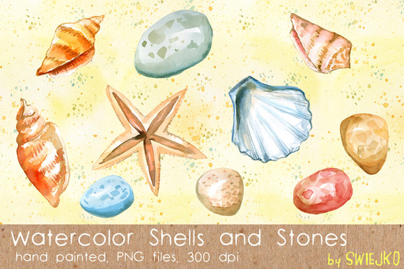 Shells Sea Treasures