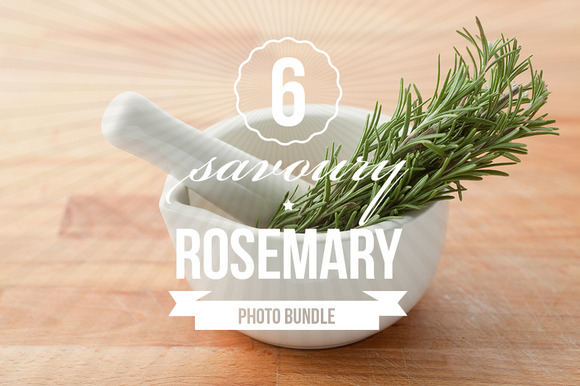 Savoury Rosemary Photo Bundle Of 6