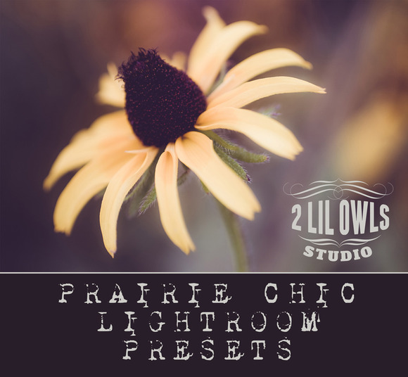 LR Presets Prairie Chic