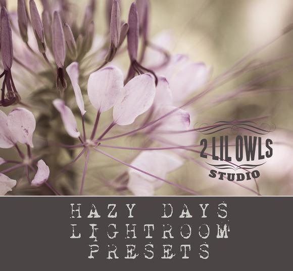 LR Presets Hazy Days