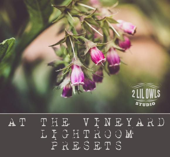 LR Presets At The Vineyard