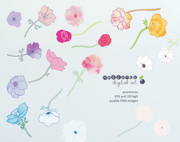 Anemones Clip Art