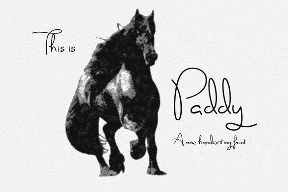 Paddy Font Logo