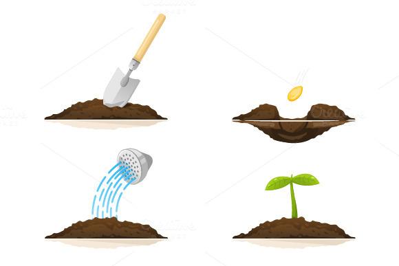 Put Plants Set