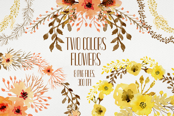 Two Colors Flowers