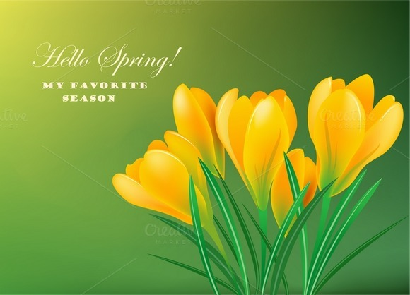 Yellow Spring Crocuses