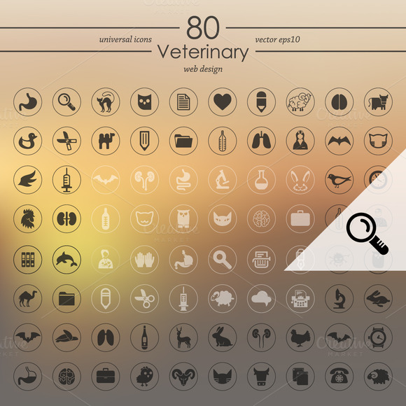 80 VETERINARY Icons
