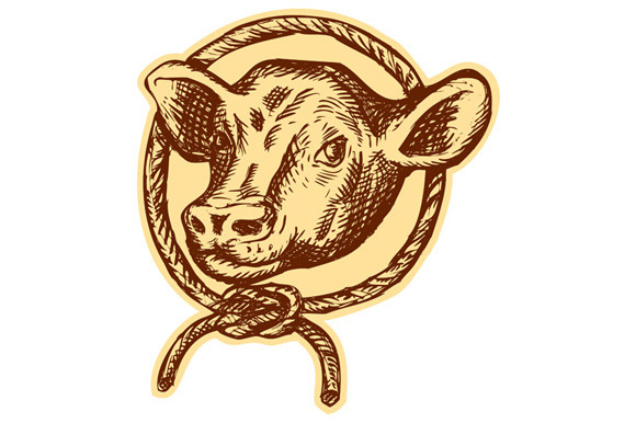 Cow Bull Head Rope Circle Etching