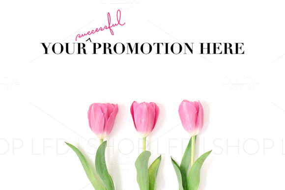 Pink Tulips Styled Stock Photography