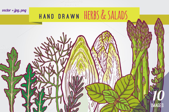 Hand Drawn Herbs And Salads