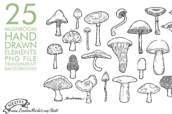 Hand Drawn Mushroom Toadstool Fungus