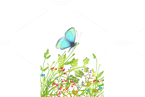 Delicate Blue Butterfly Sitting On G