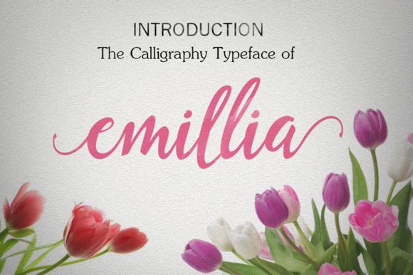 Emillia Script 25% Of