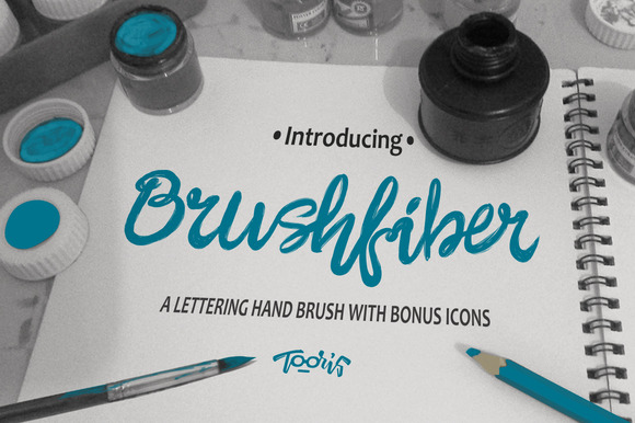 Brushfiber Typeface With Bonus