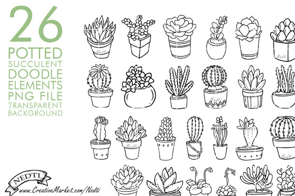 Potted Succulent Cactus Hand Drawn