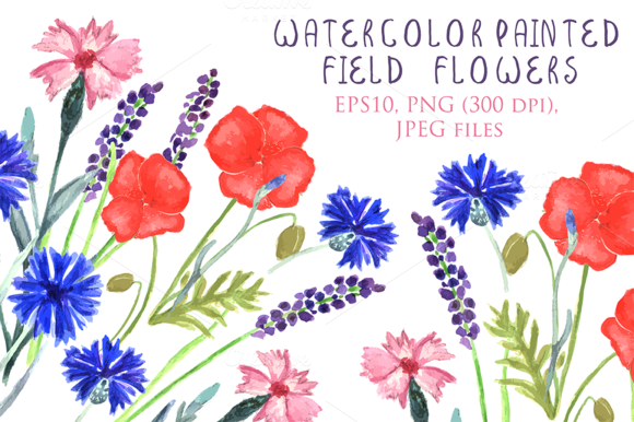 Watercolor Provence Field Flowers