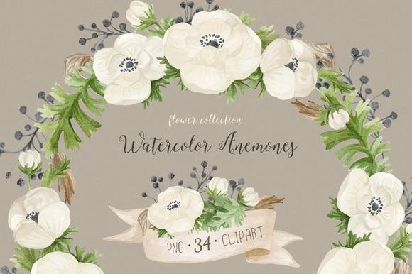 Watercolor Anemones Floral Set