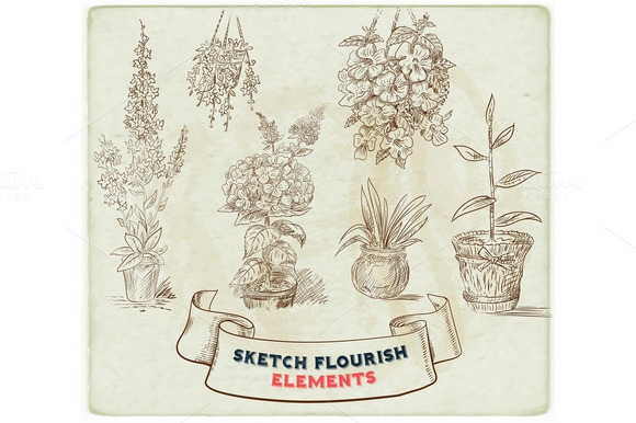 Sketches Of Floral Elements Set