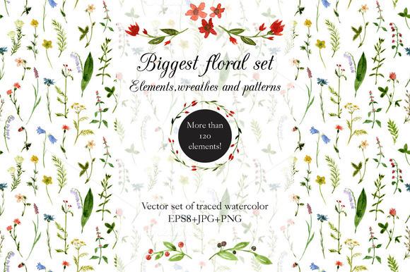 Biggest Watercolor Floral Set