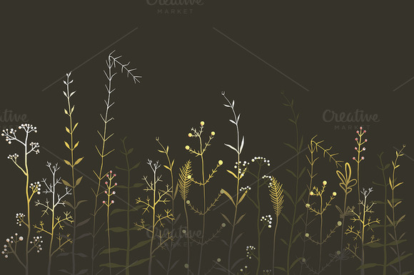 Wild Field Flowers And Grass On Dark