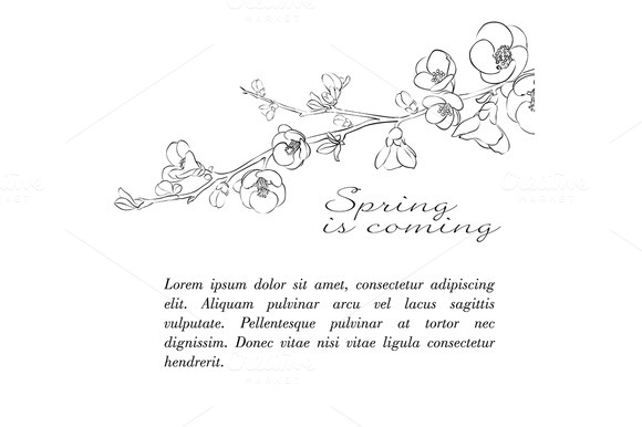 Spring Is Coming Cover