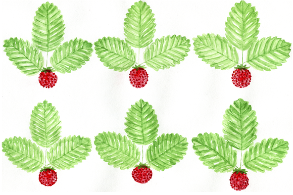 Strawberry Watercolour Pattern
