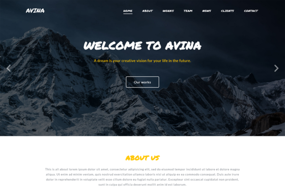 Avina Business Template