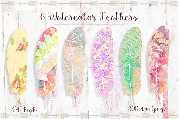 6 Watercolor Feathers Set 2