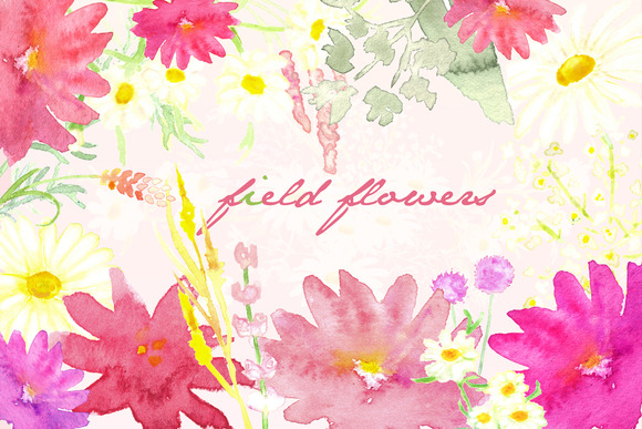 Field Flowers Watercolor Clip Art