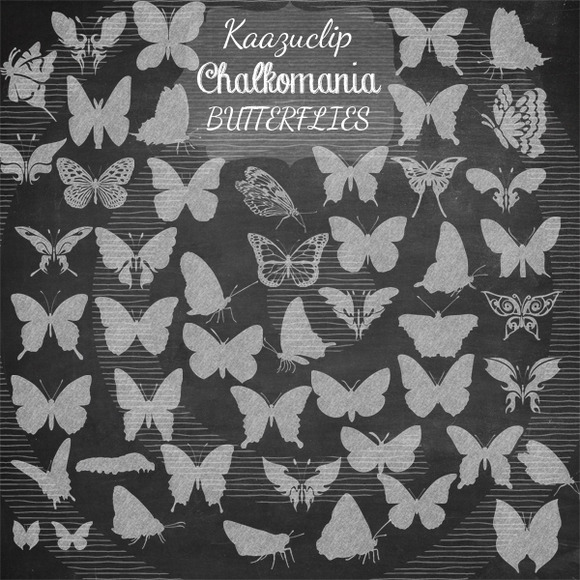 Chalk Butterflies Collection