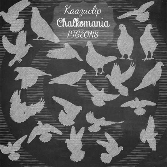Chalk Pigeons