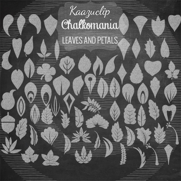 Chalk Leaves And Petals Collection