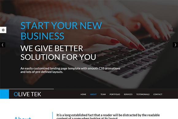 OliveTek Responsive Template
