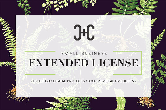 Extended Use Licence