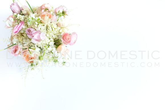 Styled Stock Photo Blush Flowers